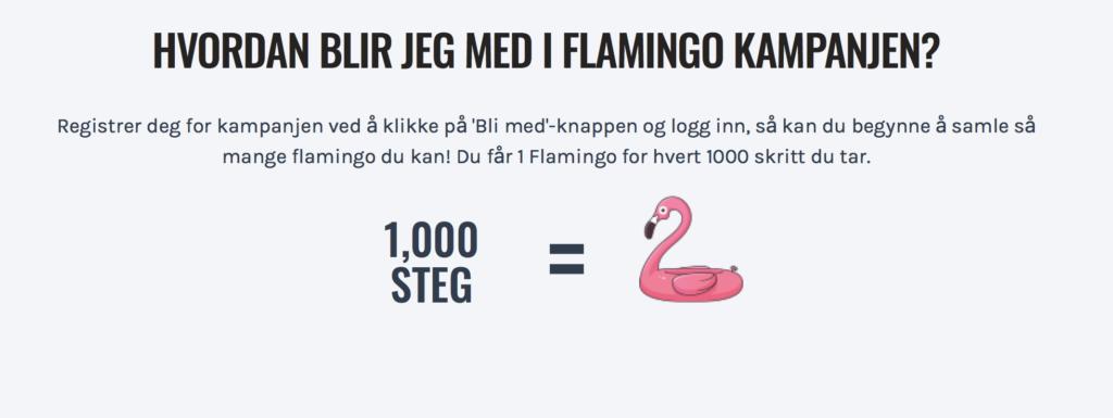 """Grafikk med teksten """"Hvordan blir jeg med i flamingo kampanjen"""" og teksten """"1000 steg = 1 flamingo"""""""
