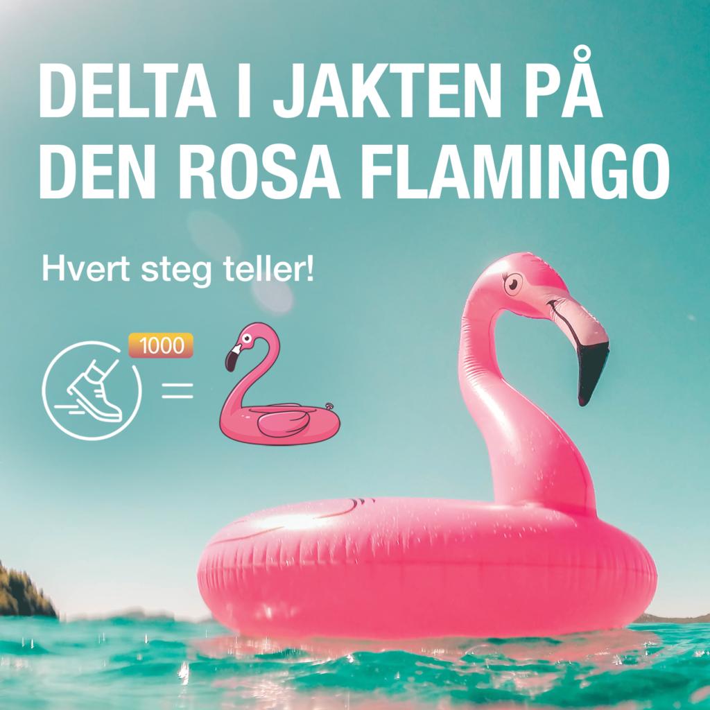 """Grafikk med en stor oppblåsbar flamingo og teksten """"Delta i jakten op den rosa flamingo""""."""