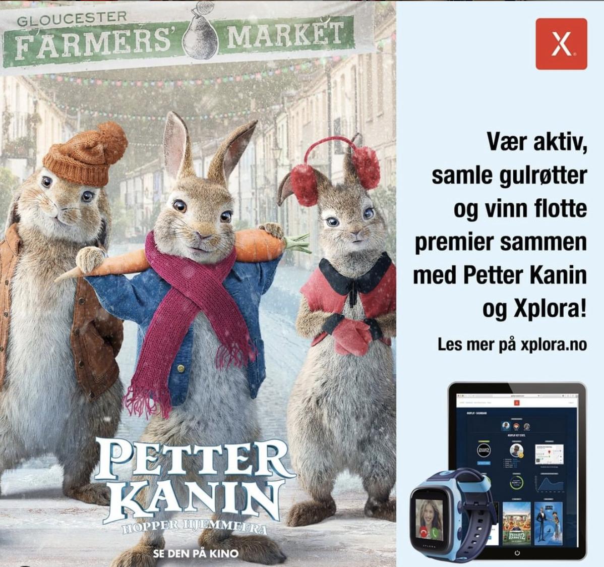 petter-kanin-annonse